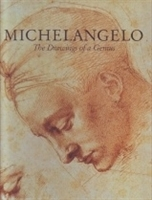 Imagen de Michelangelo. The drawings of a Genius