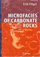 Imagen de Microfacies of carbonate rocks