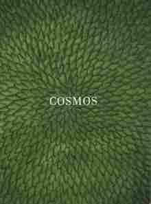 Imagen de Cosmos