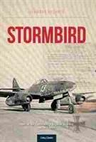 Imagen de Stormbird